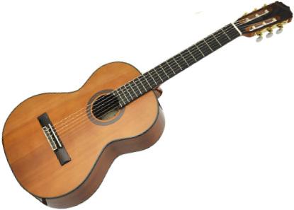 アリア ギター・ベース