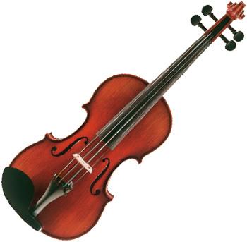 Bernd Dimbath 弦楽器