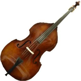 Carlo giordano 弦楽器