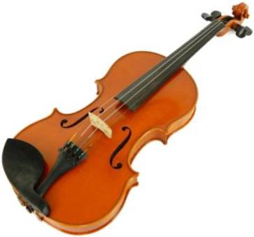 Atelier Shion 弦楽器