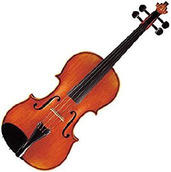 SUZUKI 弦楽器